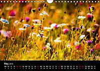Wild Meadow Scenes (Wall Calendar 2019 DIN A4 Landscape) - Produktdetailbild 5