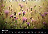 Wild Meadow Scenes (Wall Calendar 2019 DIN A4 Landscape) - Produktdetailbild 8