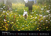 Wild Meadow Scenes (Wall Calendar 2019 DIN A4 Landscape) - Produktdetailbild 11