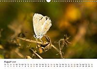 Wild North Karelia (Wall Calendar 2019 DIN A3 Landscape) - Produktdetailbild 8