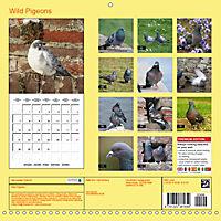 Wild Pigeons (Wall Calendar 2019 300 × 300 mm Square) - Produktdetailbild 13