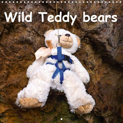 Wild Teddy bears (Wall Calendar 2019 300 × 300 mm Square), Karin Sigwarth