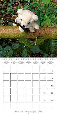 Wild Teddy bears (Wall Calendar 2019 300 × 300 mm Square) - Produktdetailbild 6