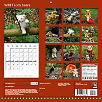 Wild Teddy bears (Wall Calendar 2019 300 × 300 mm Square) - Produktdetailbild 13