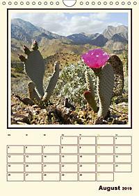 Wilde Kakteen Amerikas (Wandkalender 2019 DIN A4 hoch) - Produktdetailbild 8