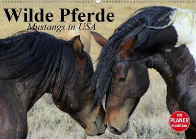 Wilde Pferde. Mustangs in USA (Wandkalender 2019 DIN A2 quer), Elisabeth Stanzer