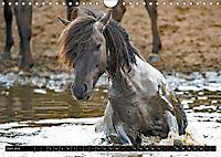 Wilde Pferde von Michael Jaster (Wandkalender 2019 DIN A4 quer) - Produktdetailbild 5