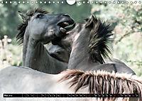 Wilde Pferde von Michael Jaster (Wandkalender 2019 DIN A4 quer) - Produktdetailbild 3
