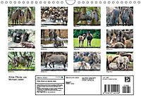 Wilde Pferde von Michael Jaster (Wandkalender 2019 DIN A4 quer) - Produktdetailbild 12