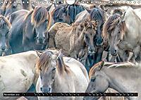 Wilde Pferde von Michael Jaster (Wandkalender 2019 DIN A4 quer) - Produktdetailbild 10