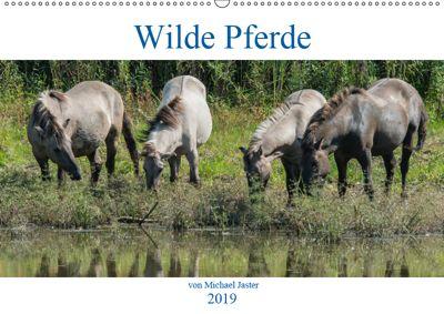 Wilde Pferde von Michael Jaster (Wandkalender 2019 DIN A2 quer), N N