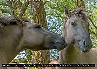 Wilde Pferde von Michael Jaster (Wandkalender 2019 DIN A2 quer) - Produktdetailbild 3