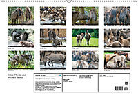 Wilde Pferde von Michael Jaster (Wandkalender 2019 DIN A2 quer) - Produktdetailbild 13