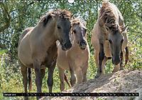 Wilde Pferde von Michael Jaster (Wandkalender 2019 DIN A3 quer) - Produktdetailbild 1