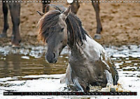 Wilde Pferde von Michael Jaster (Wandkalender 2019 DIN A3 quer) - Produktdetailbild 6
