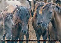 Wilde Pferde von Michael Jaster (Wandkalender 2019 DIN A3 quer) - Produktdetailbild 4