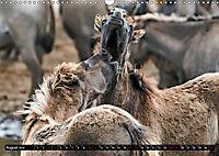 Wilde Pferde von Michael Jaster (Wandkalender 2019 DIN A3 quer) - Produktdetailbild 8