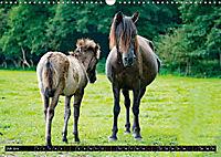 Wilde Pferde von Michael Jaster (Wandkalender 2019 DIN A3 quer) - Produktdetailbild 7