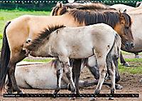 Wilde Pferde von Michael Jaster (Wandkalender 2019 DIN A3 quer) - Produktdetailbild 12