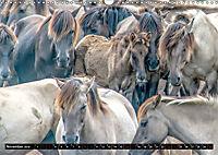 Wilde Pferde von Michael Jaster (Wandkalender 2019 DIN A3 quer) - Produktdetailbild 11