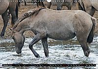 Wilde Pferde von Michael Jaster (Wandkalender 2019 DIN A3 quer) - Produktdetailbild 10