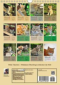 Wilde Tätzchen (Wandkalender 2019 DIN A4 hoch) - Produktdetailbild 13