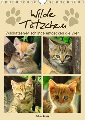 Wilde Tätzchen (Wandkalender 2019 DIN A4 hoch), Sabine Löwer