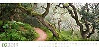 Wilde Wälder 2019 - Produktdetailbild 2