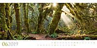Wilde Wälder 2019 - Produktdetailbild 6