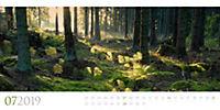 Wilde Wälder 2019 - Produktdetailbild 7