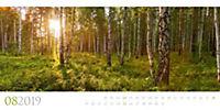 Wilde Wälder 2019 - Produktdetailbild 8