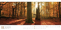Wilde Wälder 2019 - Produktdetailbild 11