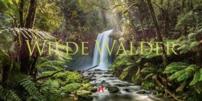 Wilde Wälder 2019