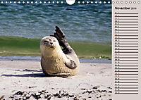 Wildes Deutschland - Unsere faszinierende Tierwelt (Wandkalender 2019 DIN A4 quer) - Produktdetailbild 5