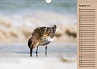 Wildes Deutschland - Unsere faszinierende Tierwelt (Wandkalender 2019 DIN A4 quer) - Produktdetailbild 8