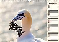 Wildes Deutschland - Unsere faszinierende Tierwelt (Wandkalender 2019 DIN A4 quer) - Produktdetailbild 12