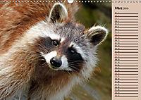 Wildes Deutschland - Unsere faszinierende Tierwelt (Wandkalender 2019 DIN A3 quer) - Produktdetailbild 3