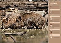 Wildes Deutschland - Unsere faszinierende Tierwelt (Wandkalender 2019 DIN A3 quer) - Produktdetailbild 2