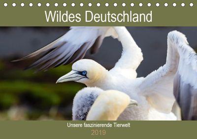 Wildes Deutschland - Unsere faszinierende Tierwelt (Tischkalender 2019 DIN A5 quer), Janita Webeler