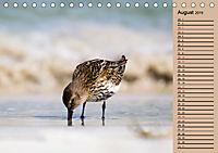Wildes Deutschland - Unsere faszinierende Tierwelt (Tischkalender 2019 DIN A5 quer) - Produktdetailbild 8