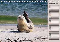 Wildes Deutschland - Unsere faszinierende Tierwelt (Tischkalender 2019 DIN A5 quer) - Produktdetailbild 11