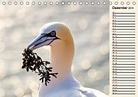 Wildes Deutschland - Unsere faszinierende Tierwelt (Tischkalender 2019 DIN A5 quer) - Produktdetailbild 12