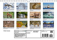 Wildes Kanada (Wandkalender 2019 DIN A4 quer) - Produktdetailbild 13