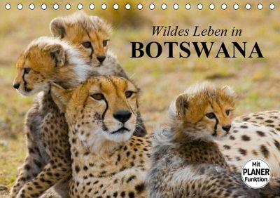 Wildes Leben in Botswana (Tischkalender 2019 DIN A5 quer), Elisabeth Stanzer