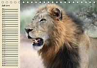 Wildes Leben in Botswana (Tischkalender 2019 DIN A5 quer) - Produktdetailbild 7