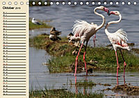 Wildes Leben in Botswana (Tischkalender 2019 DIN A5 quer) - Produktdetailbild 10