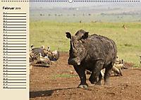 Wildes Leben in Botswana (Wandkalender 2019 DIN A2 quer) - Produktdetailbild 2