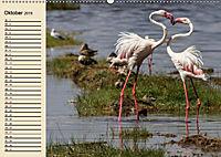 Wildes Leben in Botswana (Wandkalender 2019 DIN A2 quer) - Produktdetailbild 10
