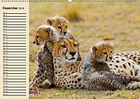 Wildes Leben in Botswana (Wandkalender 2019 DIN A2 quer) - Produktdetailbild 12