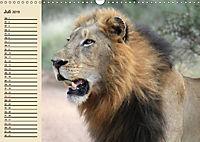 Wildes Leben in Botswana (Wandkalender 2019 DIN A3 quer) - Produktdetailbild 7